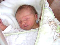 FRANTIŠKA Látalová se narodila 7. května 2016 v hořovické porodnici U Sluneční brány. Manželé Látalovi přivedli dcerku Fanču na svět společně.