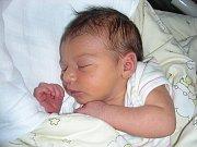 K Nikolasovi Jandovi (2,5) přibyla 27. února 2014 ve 22.31 hodin sestřička Elen. Elenka vážila po porodu 3,17 kg a měřila 48 cm. Rodiče Pavla a Tomáš Jandovi připravili pro dcerku postýlku doma ve Zvíkovci.