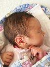 K dvouletému Honzíkovi ze Zdic, přibyla 11. dubna 2019 sestřička Zuzanka. Holčička vážila po porodu 3,05 kg a měřila 46 cm. Rodiče Anna a Štěpán děkují lékařskému personálu a sestřičkám za skvělou péči.