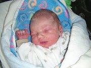 Na velikonoční pondělí 21. 4. 2014 v 21.11 hodin se narodil František Málek. Fanouškovi sestřičky po porodu navážily 2,74 kg a naměřily 47 cm. V Hýskově se na brášku těší sourozenci Lukáš (22) a Radka (17).