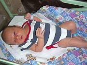 DAVID Nešvara se narodil 4. července 2017 a je druhým dítkem manželů Petry a Milana z Lochovic. Chlapeček se mohl po příchodu na svět pochlubit pěknou váhou 4,08 kg. Davídek bude vyrůstat se sestřičkou Deniskou, která oslaví v říjnu třetí narozeniny.