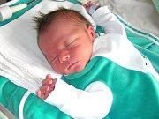 Pokračovatel rodu Kalousů, Miroslav IV. se narodil 2. května 2014 manželům Lucii a Miroslavu Kalousovým z Berouna. Mireček vážil po příchodu na svět 3,38 kg a měřil 49 cm. Z bratříčka se raduje dvouletá sestřička Eliška.