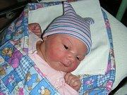 PĚKNOU váhou 4,01 kg a mírou 52 cm se mohla 23. července 2017  po narození pochlubit Karolína Sekerová z Kladna. Rodiče Milada Bláhová a Martin Sekera přivedli prvorozenou holčičku na svět společně.