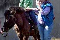 Koňáctví je vášeň, pro některé lidi odmalička. S úrazem je ale třeba vždy počítat a chránit se.
