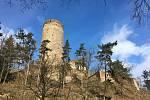 Zřícenina hradu Žebřák.