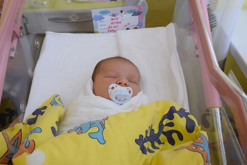 Sofie Vojtová se Daniele Vojtové a Rudolfu Řehákovi narodila v benešovské nemocnici 13. června 2021 v 11.37 hodin, vážila 4600 gramů. Doma v Krhanicích na ni čekal bratr Matyáš (5).