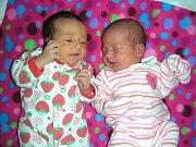 Dvojnásobnou radost mají rodiče Michaela Křivánková a Radomír Pech z Líšné, kterým se 26. února 2014 narodila krásná dvojčátky, dcerky Gabriela a Natálie. Gabriela přišla na svět s váhou 2,87 kg a mírou 48 cm, Natálka vážila také 2,87 kg a měřila 47 cm. K