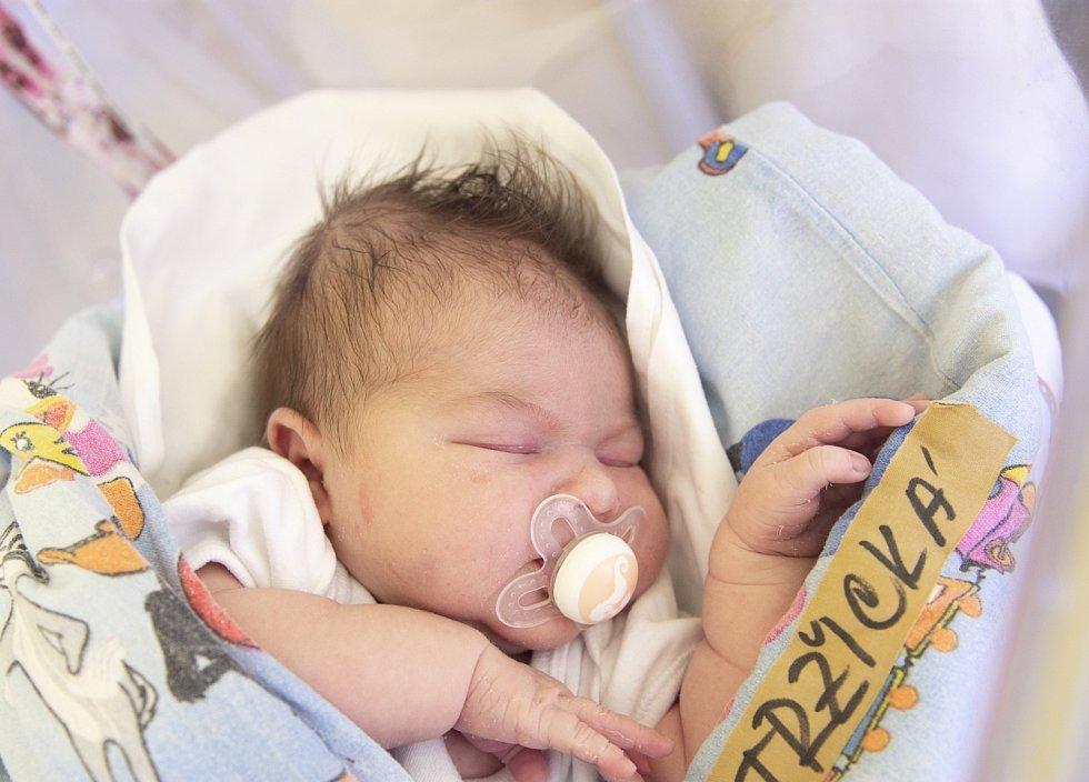 Leontýna Tržická se narodila v nymburské porodnici 12. července 2021 v 15.33 hodin s váhou 4250 g a mírou 50 cm. V Milovicích bude prvorozená holčička bydlet s maminkou Kristýnou a tatínkem Josefem. Foto: Viktoria Meyer