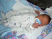 DO RODINY motocrosářů z Berouna přibyl 21. července nový člen. Jmenuje se Adam Hanzlík a je prvorozeným synem Andrey Nedvědové a Jana Hanzlíka. Adámek vážil po porodu 3,45 kg a měřil rovných 50 cm.