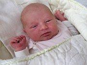 HOLČIČKA Barbora z Berouna, se narodila v pondělí 5. března 2018 v hořovické porodnici U Sluneční brány. Barborka se mohla po porodu pochlubit pěknou váhou 3,94 kg a mírou 51 cm.