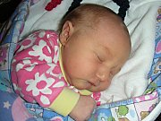 VE ČTVRTEK 7. prosince 2017 se stali poprvé rodiči Lenka Haňáčková a Tadeáš Dvorský z Prahy – Čakovic. V tento den se jim narodila dcerka a rodiče jí dali jméno Viola. Violka Dvorská vážila po příchodu na svět 3,17 kg a měřila 48 cm.