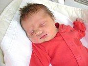 K synkovi Adámkovi (2 r. 10 m.) si manželé Petra a Martin Janů pořídili dcerku a dali jí jméno Kristýna. Kristýnka se prvně rozkřičela do světa 3. května 2014, v ten den vážila 3,36 kg a měřila 48 cm. Rodinka má domov v Srbsku.