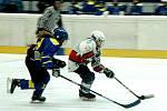 Hokejoví Medvědi sehráli dobré utkání.