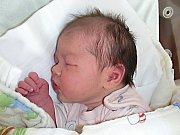 Lence Volfíkové a Tomášovi Procházkovi z Tmaně se 5. března 2014 narodilo miminko. Rodiče věděli, že jejich první děťátko bude holčička a vybrali pro ni jméno Bára. Barunka vážila po narození 3,45 kg.