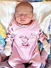 DATUM 17. října 2017 má v rodném listě zapsané Deniska Kenclová, druhé dítko manželů Veroniky a Aleše z Třenice. Deniska se narodila v 19.12 hodin, vážila 3,05 kg a měřila 47 cm. Doma se na miminko těšila sestřička Andrejka. Foto: Rodina