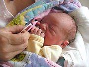 PRVNÍ miminko, holčička Barbora, se narodilo v hořovické porodnici U Sluneční brány manželům Smržovým. Maminka a tatínek si Barunku odvezli z porodnice domů do Chrustenic.