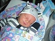 DO BEROUNA přibyl 11. listopadu 2017 nový občánek. Jmenuje se Robin Malý a je prvním dítkem Veroniky Paterové a Robina Malého. Robinek vážil po příchodu na svět 3,64 kg a měřil rovných 50 cm.