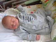 RODIČŮM Michaele Bílkové a Davidovi Pačesovi z Prahy, se 27. dubna 2018 narodil syn David. Davídek Pačes vážil po porodu 2,73 kg a měřil 49 cm.