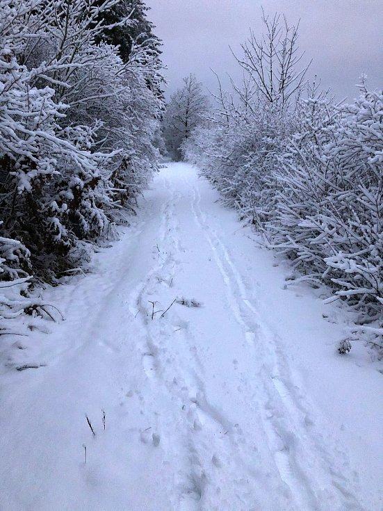 Stezky kolem kopce Damil nabízí příjemnou procházku.