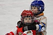 Týden hokeje. Archivní foto.