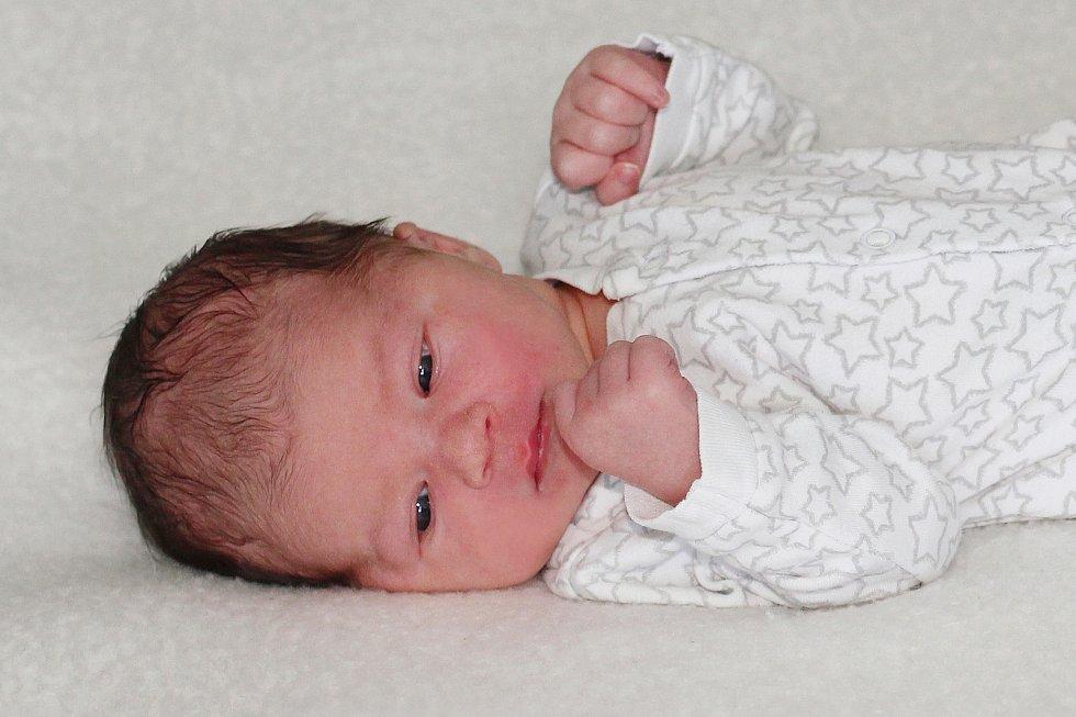Emilie Šolcová se narodila 11. července 2021 v Příbrami. Vážila 3420g a měřila 52cm. Doma v Praze ji přivítali maminka Michaela, tatínek Lukáš a čtyřletý Vilém.