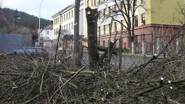 Kácení stromů v berounských bývalých kasárnách