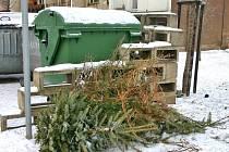 U kontejneru skončí jen minimum vánočních stromků. Lidé je většinou vyhazují z bytů oknem ven