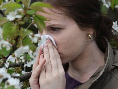 Ilustrační foto alergie