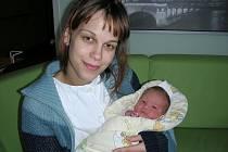 Prvním miminkem roku 2011 narozeným v hořovické porodnici je holčička Viktorie, prvorozená dcerka rodičů Petry Krtkové a Jana Šebka. Viktorka přišla na svět v sobotu 1. ledna v 19.06 hodin, vážila 3,06 kg a měřila 48 cm. Domov má rodinka ve Zdicích.