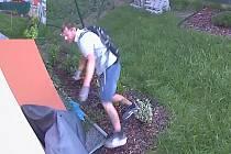 Zloději kradou jízdní kolo.