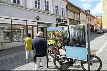 Galerie Pěší zóna nabízí prohlídku fotografií od fotografa a jeskyňáře Martina Majera a uznávaného amatérského mykologa Oldřicha Jindřicha.
