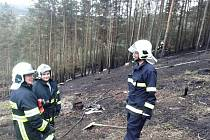 Požár lesa v Malých Přílepech