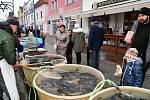 Z vánočního prodeje ryb na Husově náměstí v Berouně.