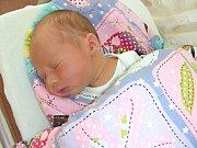 K SOUROZENCŮM Vanese (1 r. 3 m.) a Gabrielovi (3 r.), přibyl 6. října 2017 třetí člen do dětské party, bráška Alexandr Robert Bažo. Chlapečkovy porodní míry byly 49 cm a 3,34 kg. Alexandr je synem Romany Černé a Roberta Baža z Hořovic.