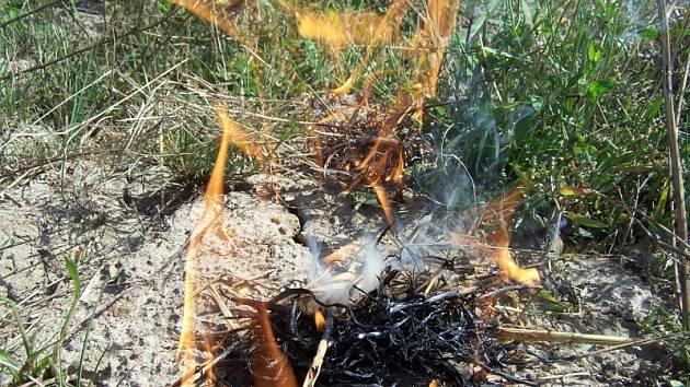Oheň na poli