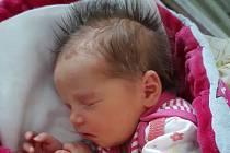 Terezka Vildová se narodila se 31. března 2020 v hořovické porodnici. Po porodu vážila 3,29 kg a měřila 48 cm. Rodiče Lenka a Jan Vildovi a tříletý bratr Tomášek se z ní těší v králodvorském Levíně.