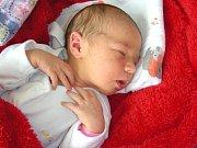 THEA se narodila ve čtvrtek 13. července 2017 v hořovické porodnici U Sluneční brány, vážila 3,11 kg a měřila 49 cm. Maminka a tatínek mají ze své prvorozené dcerky velkou radost.