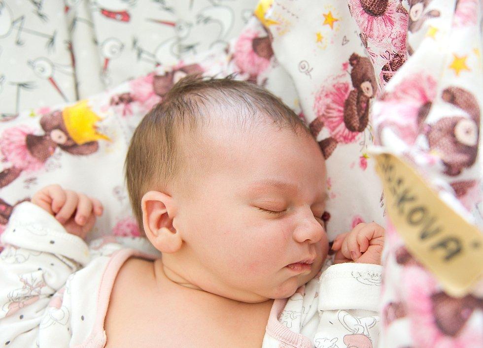 Rosalie Josková se narodila v nymburské porodnici 15. června 2021 v 2.42 hodin s váhou 3900 g a mírou 52 cm. V Jaroměři bude prvorozená holčička bydlet s maminkou Michaelou a tatínkem Pavlem.