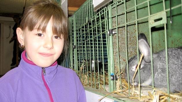 Výstava zaječovských chovatelů ve Kvani