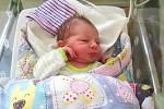 Manželům Monice a Antonínovi Hejnovým z Homole, se 15. listopadu 2018 narodilo první dítko, syn Matyáš. Matyášek vážil po příchodu na svět 3,80 kg a měřil 49 cm.