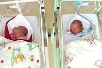 Dvojnásobnou radost mají rodiče Lucie Kleknerová a Vlastimil Průcha z Berouna, kteří si pořídili k synkovi Tomáškovi (3) v sobotu 18. dubna 2015 dvojčátka, Karolínu a Matěje. Karolínka přišla na svět první s váhou 2,46 kg a Matýsek vážil po porodu 2,86 kg