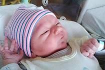 Martin z Kařezu se narodil 24. července 2019 v hořovické porodnici. Z Martínka se radují maminka Sabina Giňová, tatínek Martin Onodi a sestřička Nelinka Onodiová.