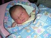 PRVNÍM miminkem, které se letos narodilo v hořovické porodnici, je Stela Hlaváčková z Libečova. Stelinka přišla na svět 1. ledna 2018 s váhou 3,52 kg a mírou 49 cm. Manželé Lucie a Roman přivedli své prvorozené štěstí na svět společně.