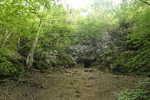 Jubilejní stá lokalita zrealizovaná v rámci společného programu ČSOP a společnosti Net4Gas s názvem Blíž přírodě.