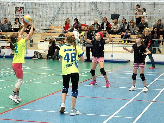 Hořovická hala byla svědkem turnajů v žlutém a červeném minivolejbale.
