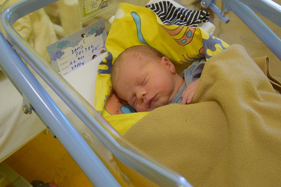 David Polyak se Veronice Jeřábkové a Petru Polyakovi narodil v benešovské nemocnici 1. června 2021 v 8.25 hodin, vážil 4980 gramů, měřil 59 centimetrů. Rodina bydlí ve Vlašimi.