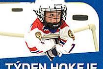 Adepti ledního hokeje mohou přijít vyzkoušet si své umění.