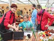 Podzimní aranžmá z vřesu, macešek a mnoha dalších rostlin si mohly děti vyrobit o víkendu v zahradním centru v Králově Dvoře. Akce nazvaná Podzimní tvoření přilákala desítky lidí.