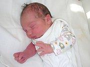 DANIEL Malý z Berouna se narodil 8. října 2017, vážil 3,42 kg, měřil 48 cm a je druhým dítkem manželů Sandry a Bohumila. Kočárek s bráškou bude vozit sestřička Marianka (3,5). Danielova prababička měla v rodném listě datum narození také 8. října.