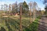 Bývalý výběh pro muflony v lesoparku Litavka se změní na psí park.